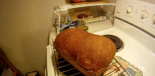 The Bread Baking Language: Words, Jargon, Terminology, and Key Concepts